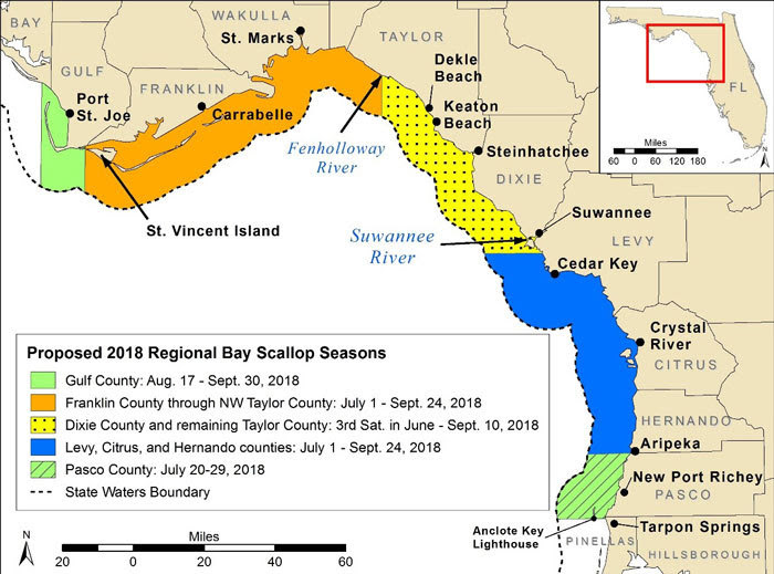 scallop season 2018 in Cape San Blas