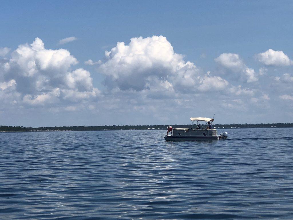 Rental Pontoon boat 1